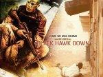 black-hawk-01